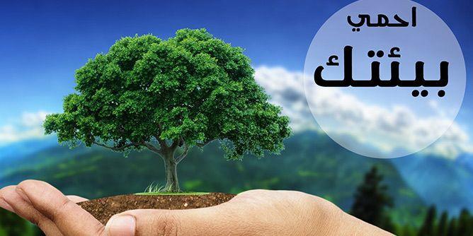 تعريف البيئة مقال شامل عن تلوث ومشاكل البيئة موسوعة
