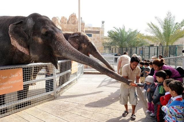 حديقة حيوان الامارات أفضل أماكن ترفيه الأطفال بالإمارات موسوعة