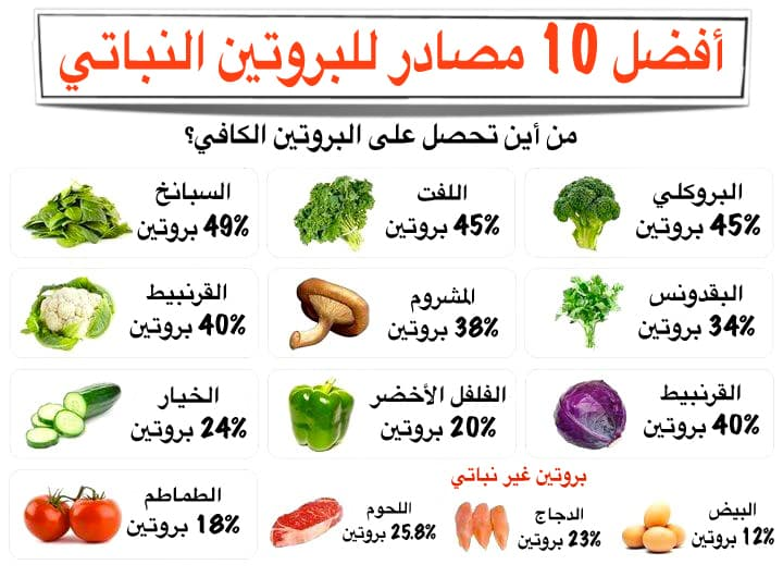 What Are High Protein Foods For Weight Loss