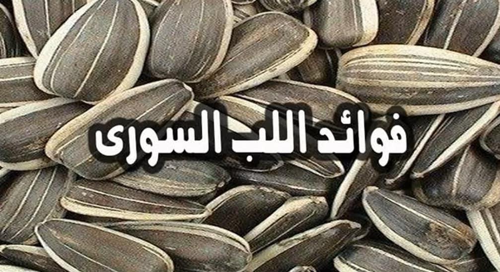 فوائد اللب السوري