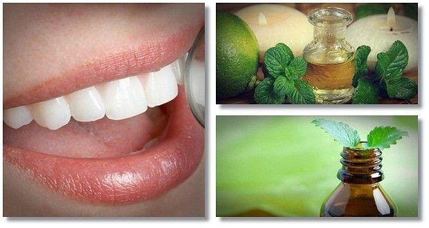 فوائد زيت الزعتر للاسنان