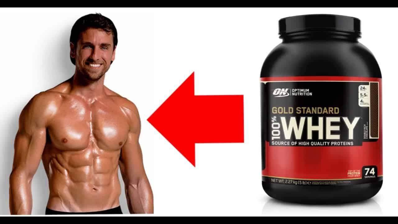افضل بروتينات للعضلات للتضخيم موسوعة