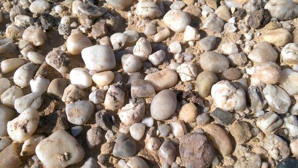 الحجر في المنام
