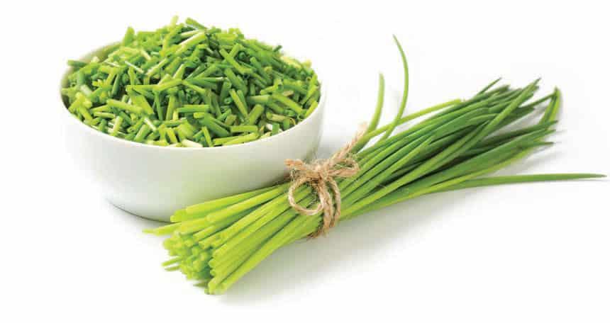 تزيين الأطباق باستخدام البصل الأخضر