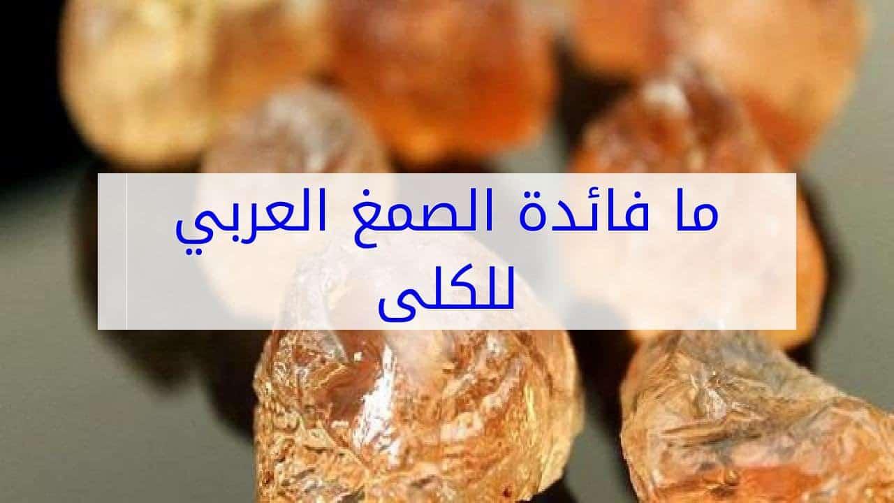 طريقة استعمال الصمغ العربي للكلى