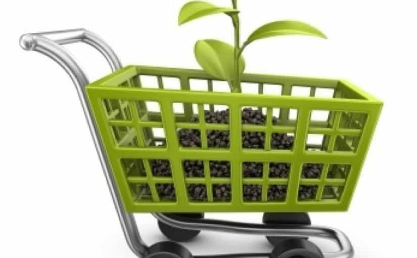 المستهلك الأخضر