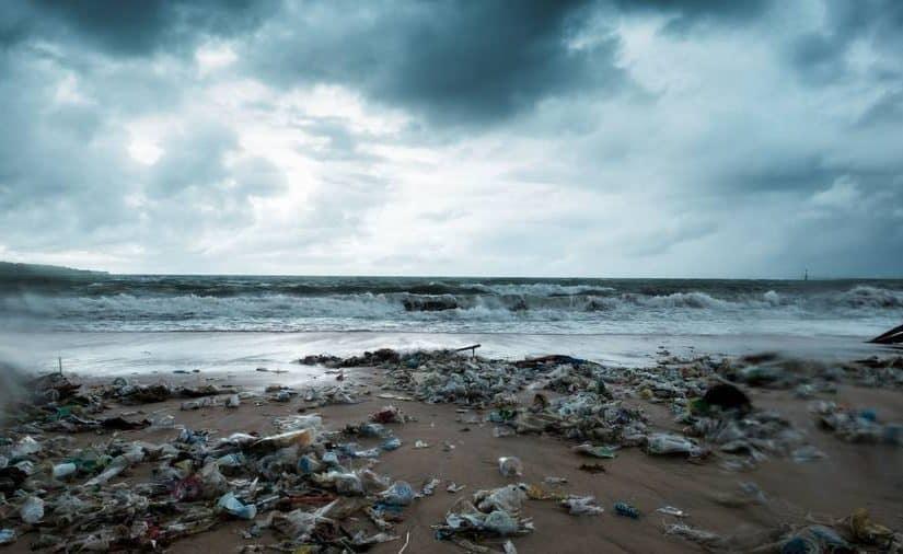 اسباب تلوث البيئة وعلاجها