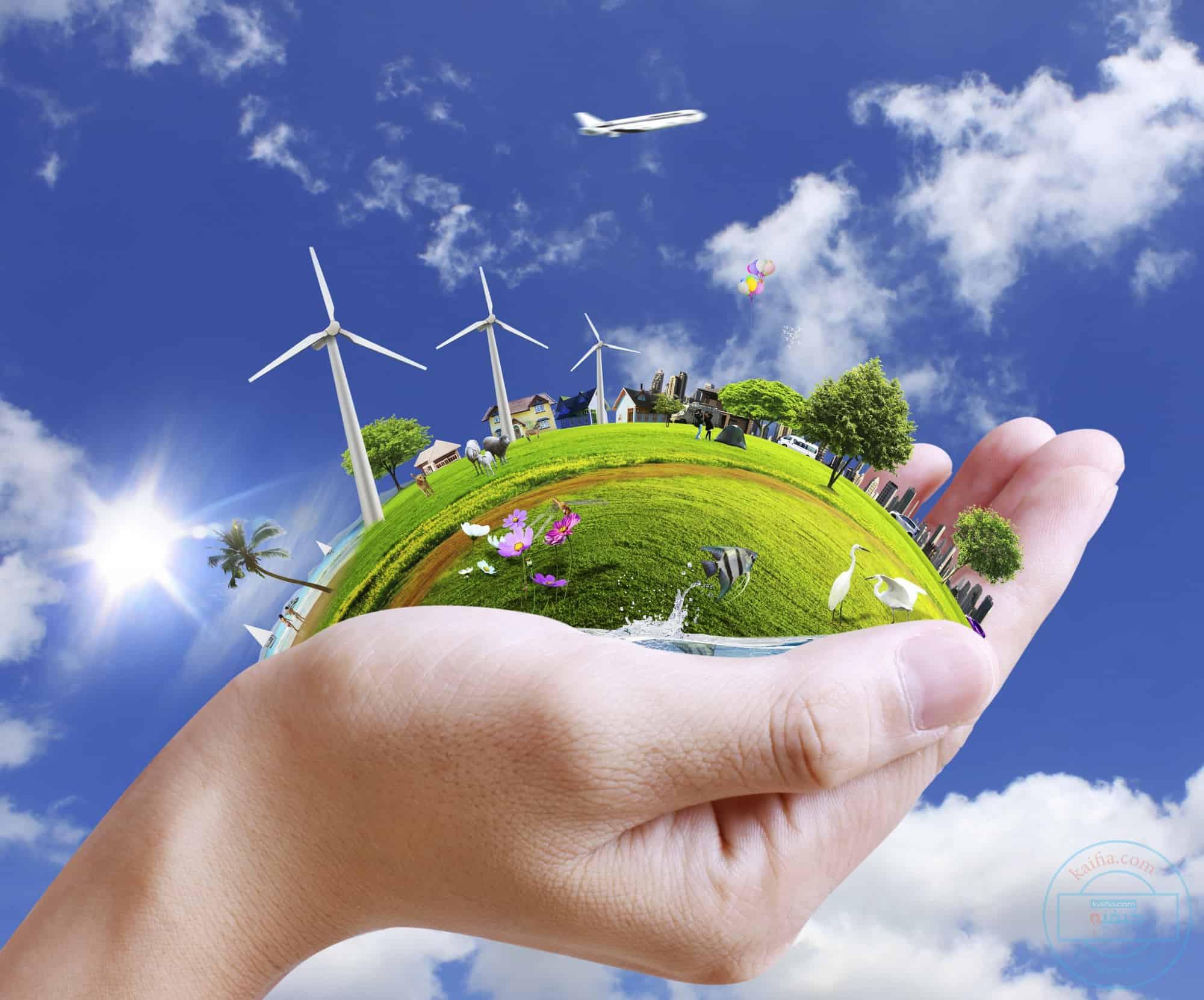 المحافظة على البيئة