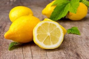 حشيشة الليمون