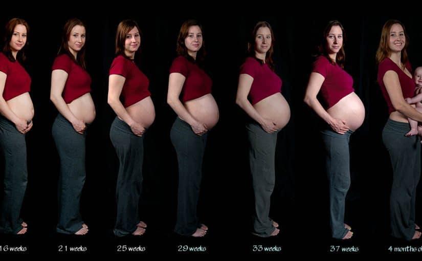 تراكمي شقائق النعمان البحرية الجدول الزمني ضغط الجنين اسفل البطن في الشهر التاسع Comertinsaat Com