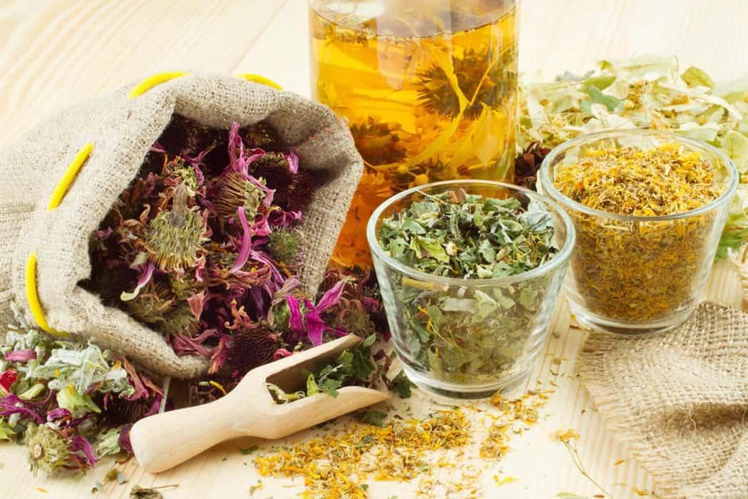 الأعشاب المفيدة لعلاج الروماتيزم