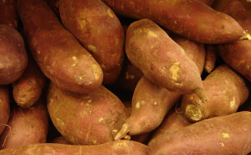 طريقة رجيم البطاطا الحلوة موسوعة