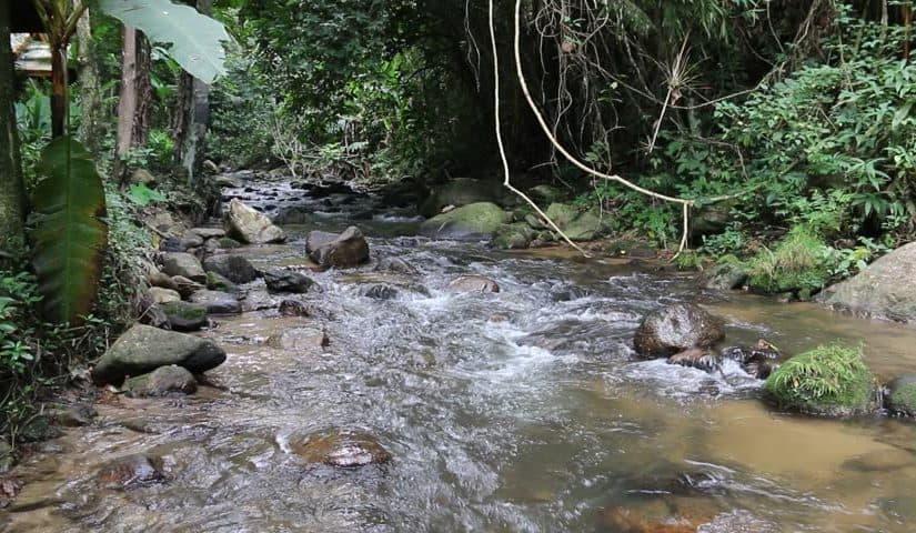 عبور النهر في المنام