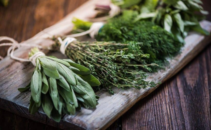 علاج حب الشباب بالأعشاب