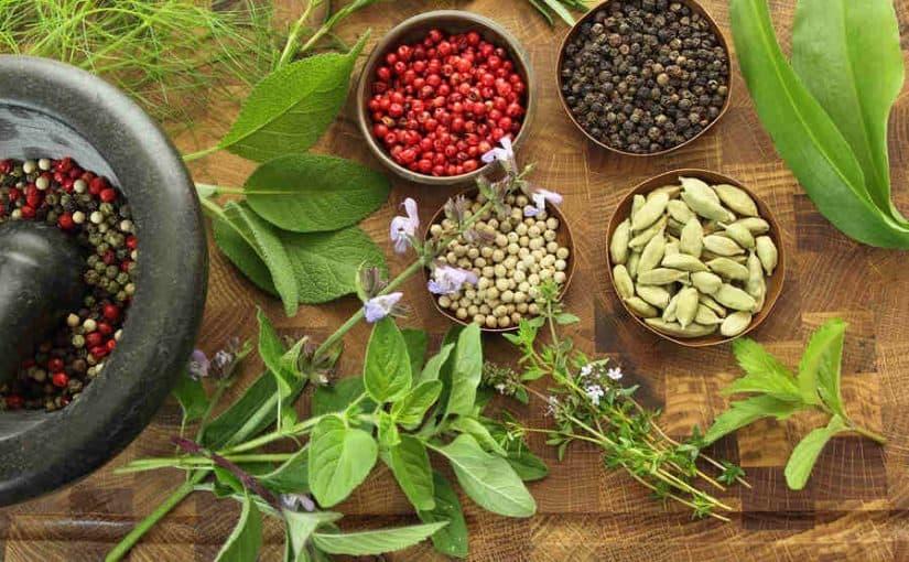 علاج الضعف العام بالأعشاب