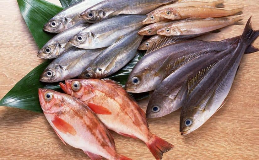 تفسير حلم شراء السمك لإبن سيرين