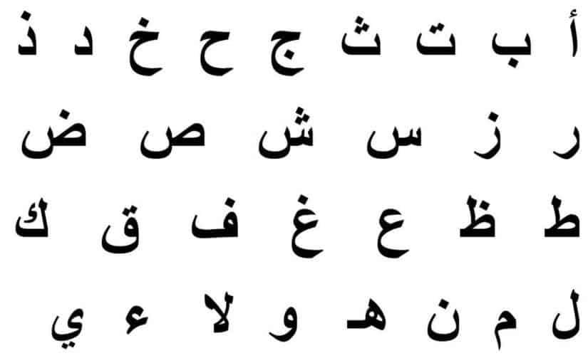 فضل تعلم اللغة العربية