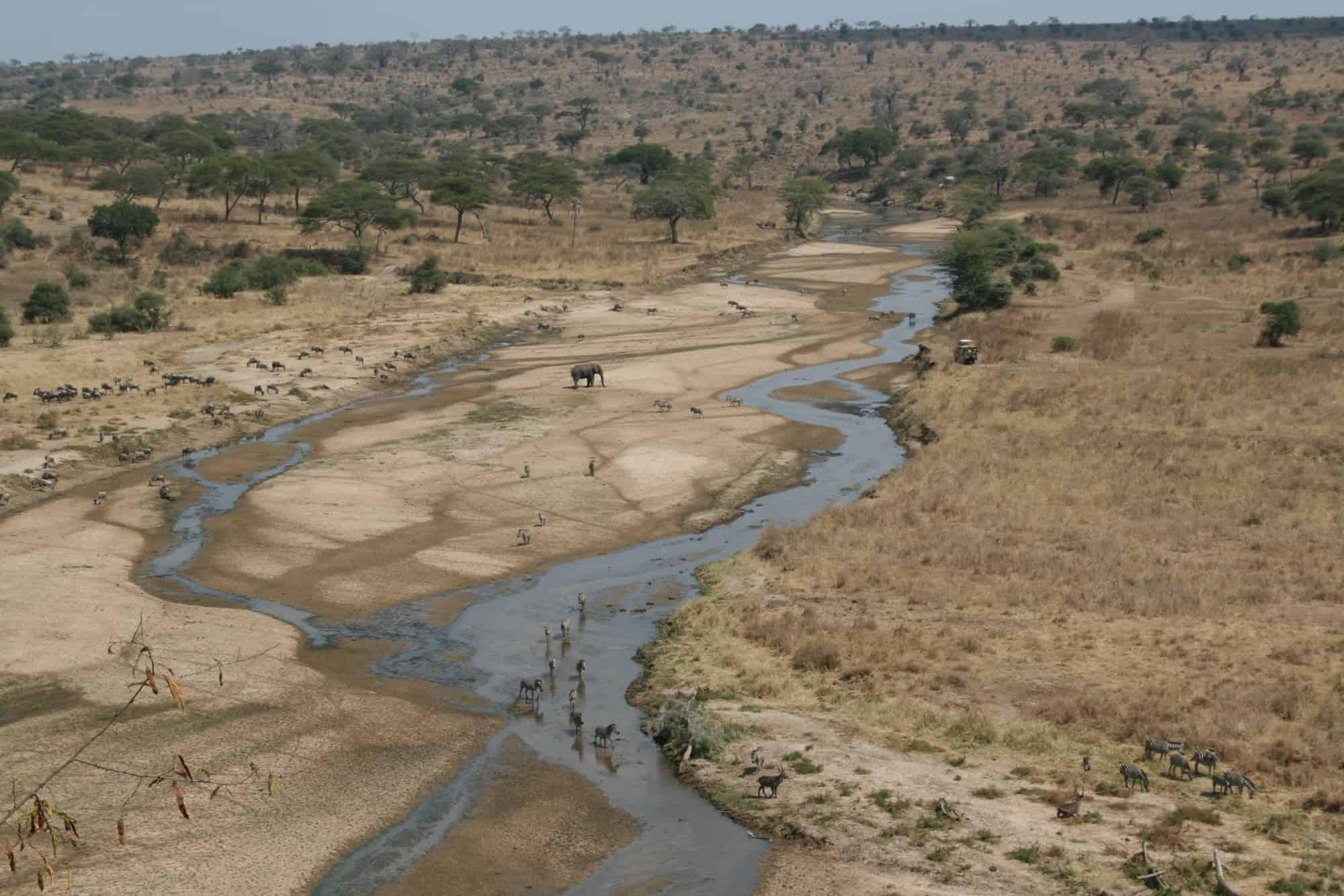 ما تفسير جفاف النهر في المنام
