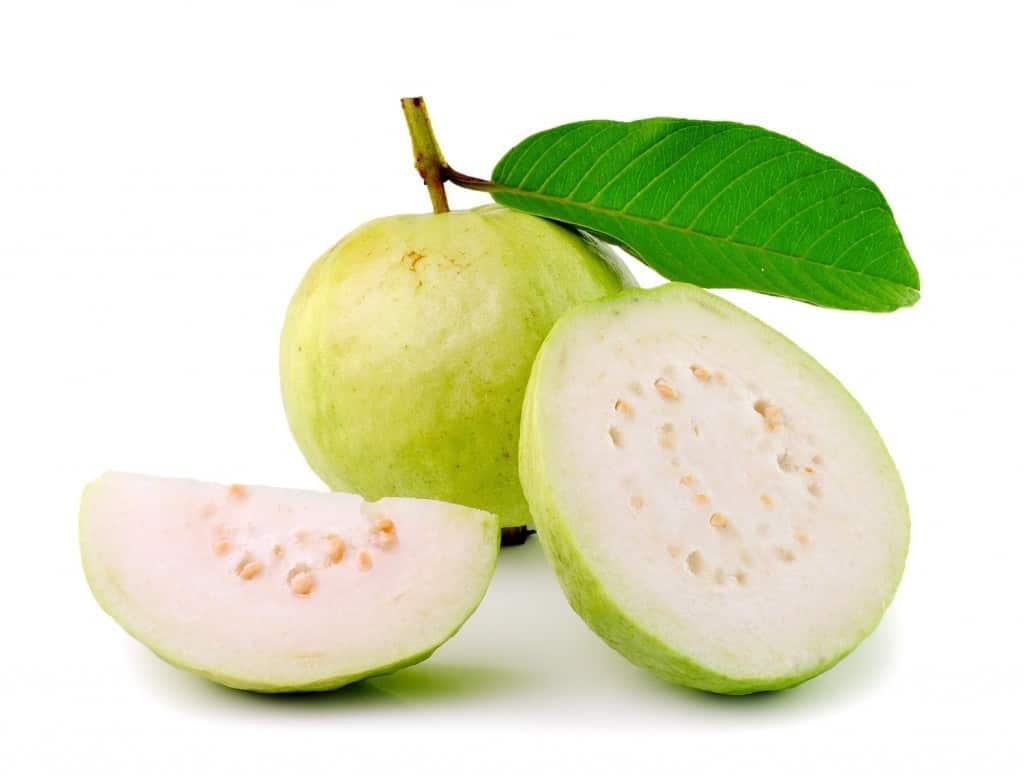 فوائد الجوافة للجنس والصحة موسوعة