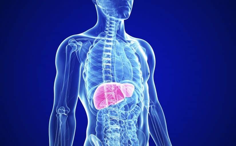 تنظيف الكبد من السموم في يوم واحد