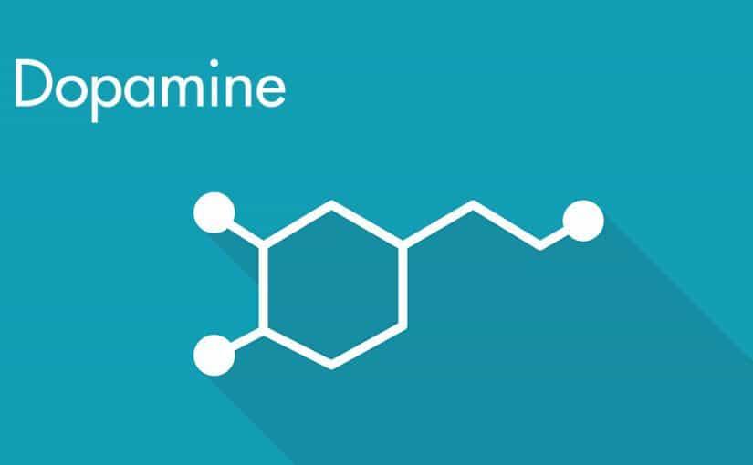 متى ينتهي الدوبامين