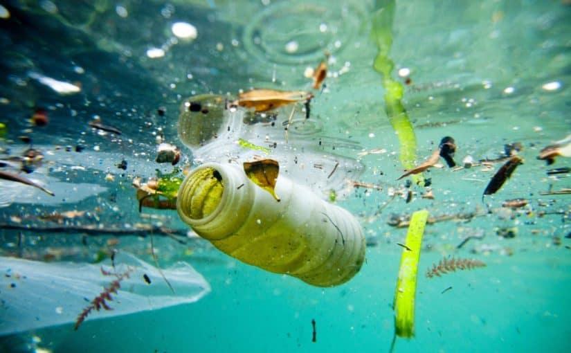 اضرار تلوث الماء