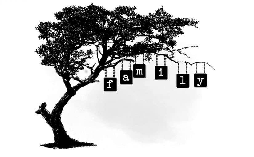تعرف على أصول شجرة عائلات مصر موسوعة