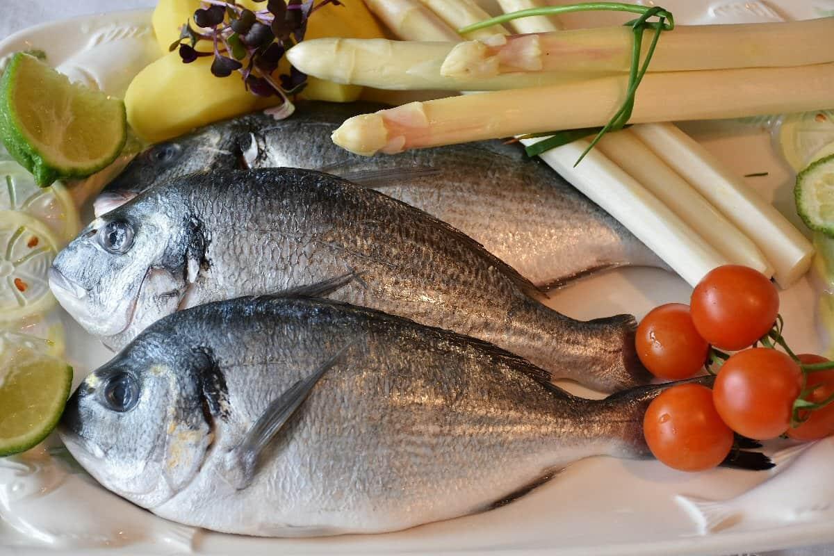 طريقة تخزين السمك