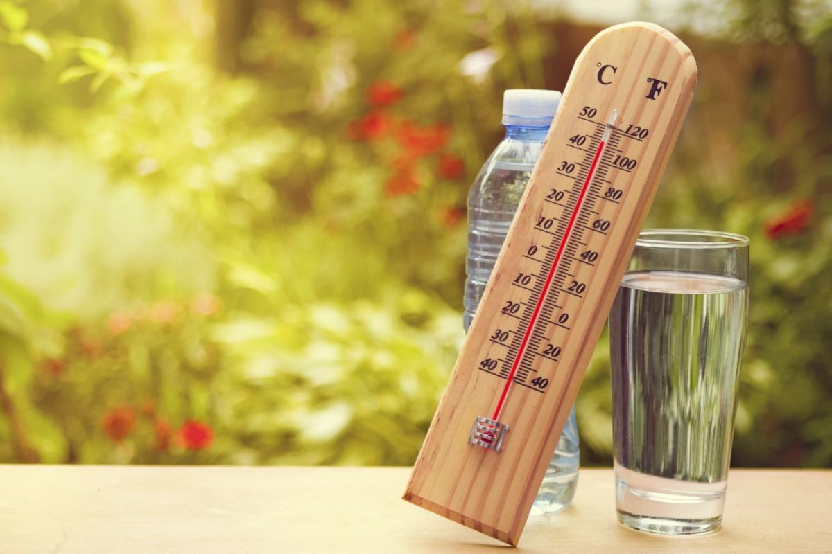 درجة حرارة الجسم