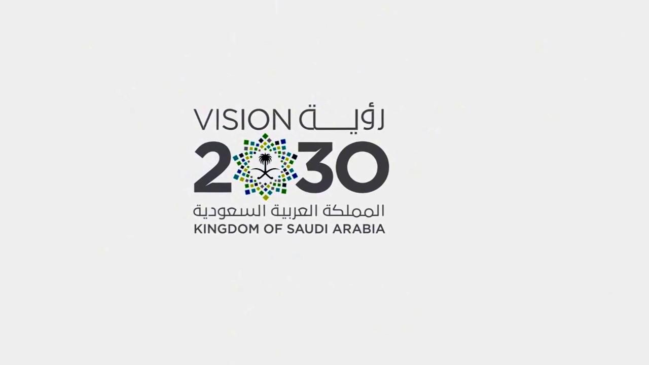 بحث عن رؤية 2030 موسوعة