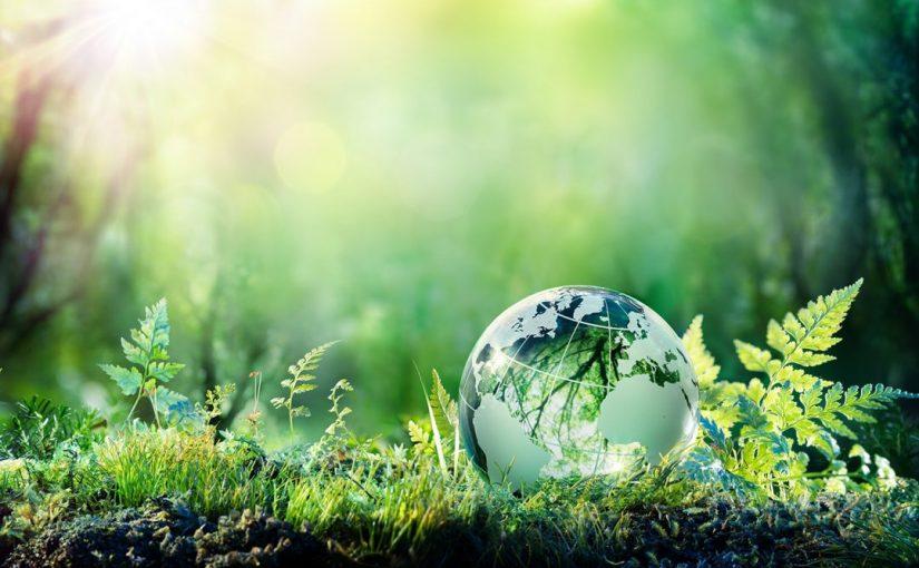 موضوع عن البيئة النظيفة