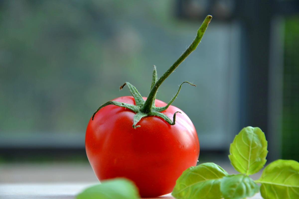 فوائد الطماطم على الريق