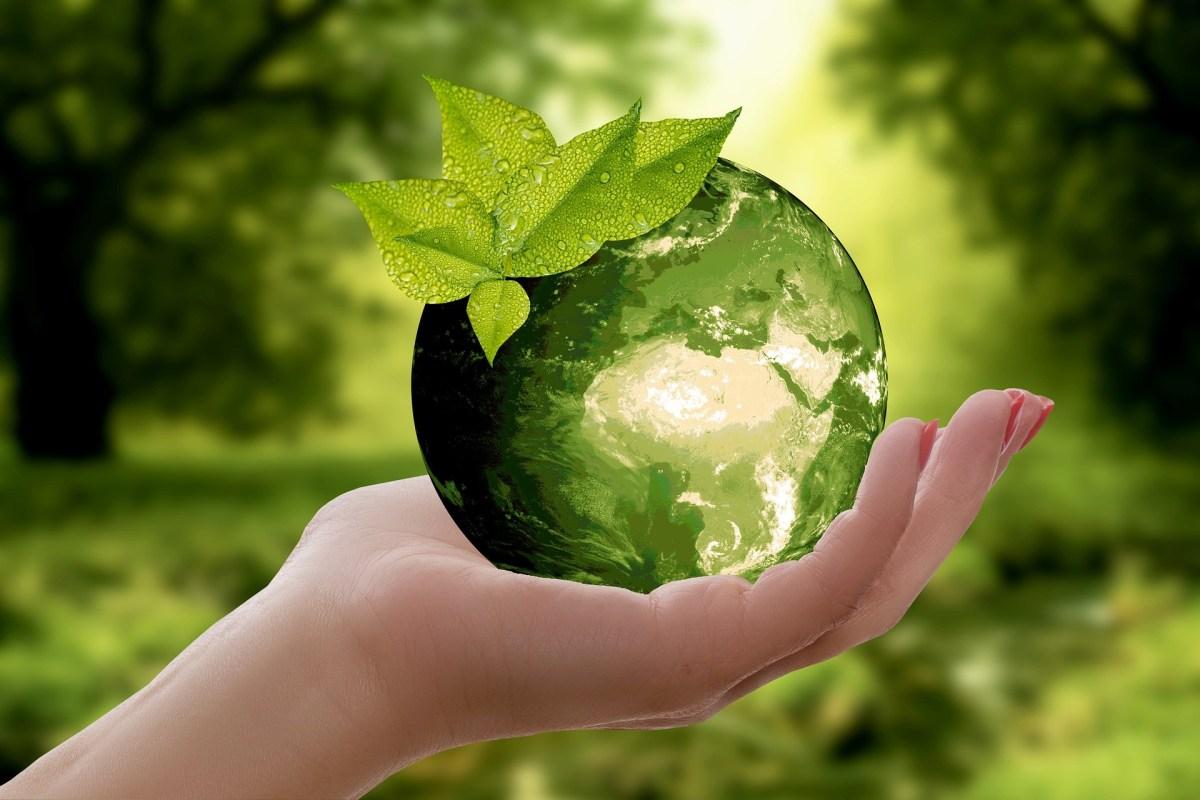 موضوع عن البيئة الصحية - موسوعة