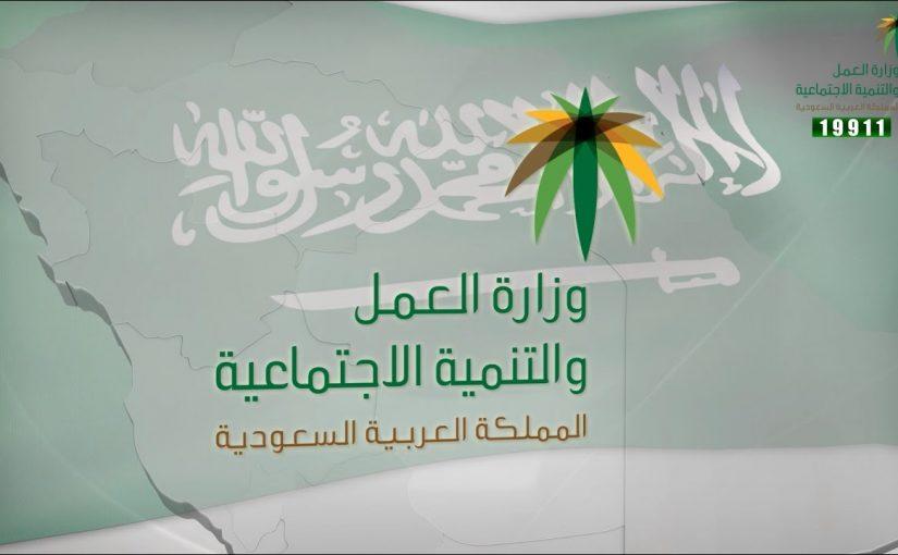 المملكة العربية السعودية وزارة العمل