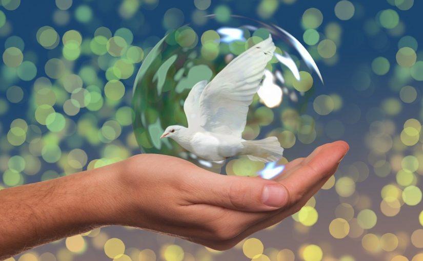 موضوع عن السلام