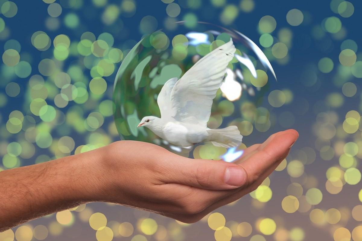 موضوع عن السلام العالمي