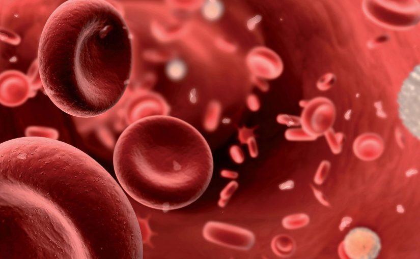 موضوع عن فقر الدم