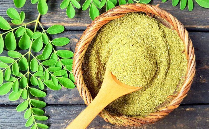 من فوائد نبات المورينجا وطرق إستخدامه