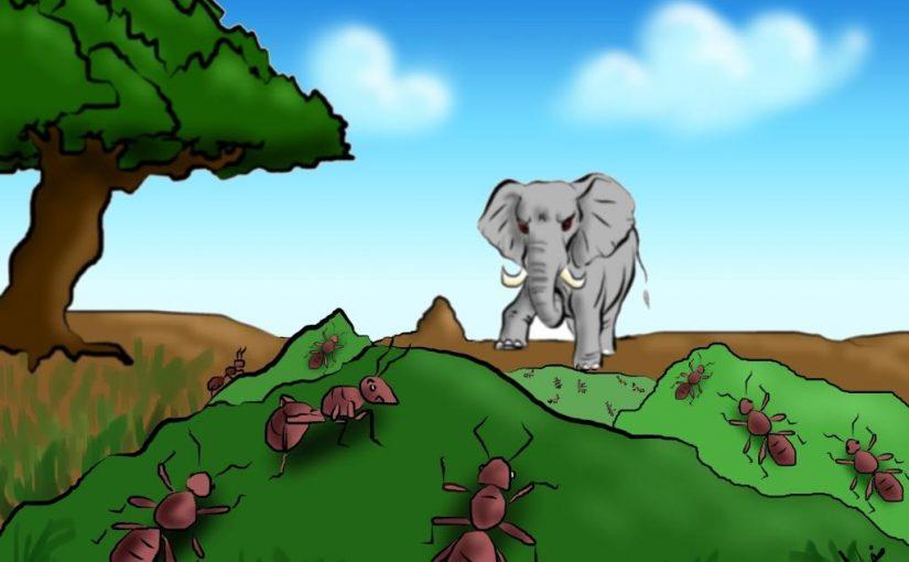 قصة الفيل للاطفال