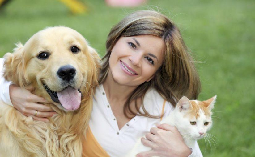 فوائد اقتناء الكلاب