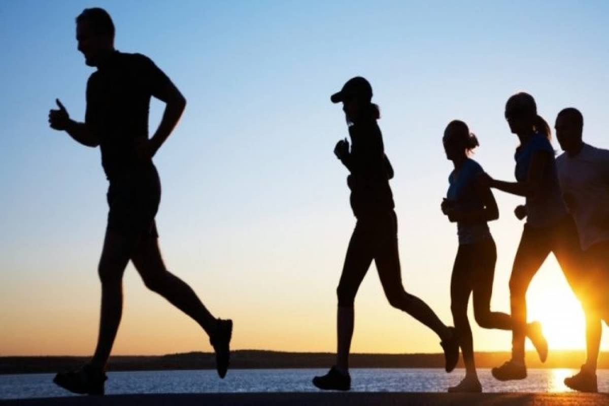 بحث عن الرياضة والصحة pdf
