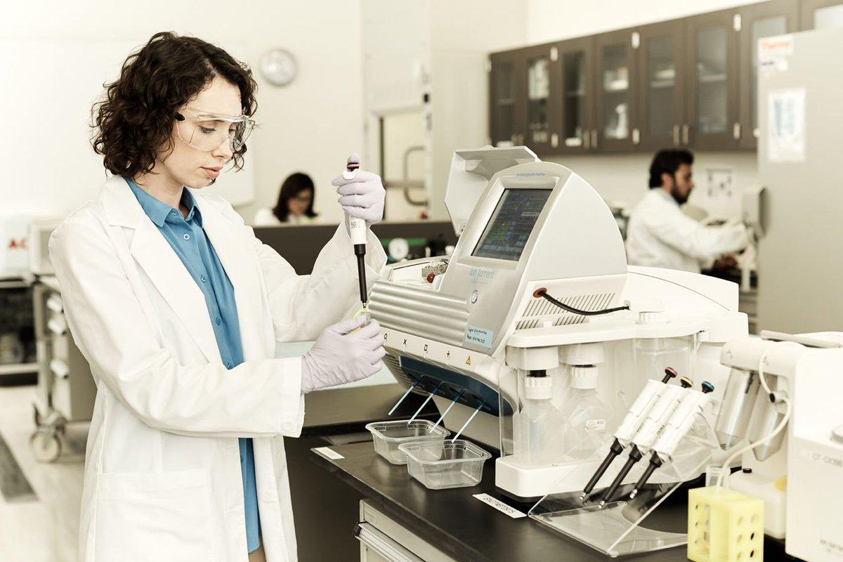 بحث عن البحث العلمي