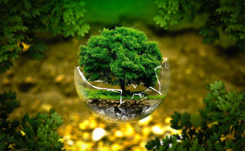 معلومات عن البيئة