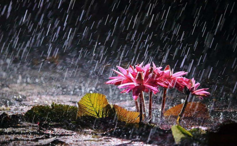 أدعية عند المطر