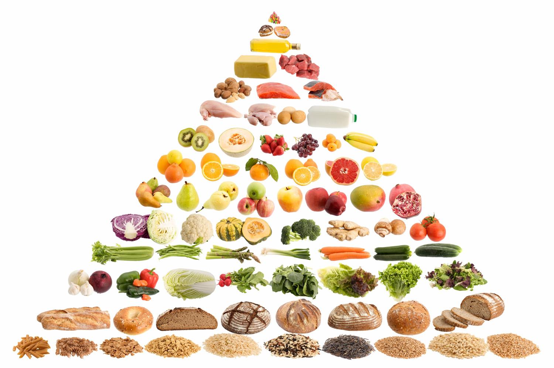ما هو الهرم الغذائي