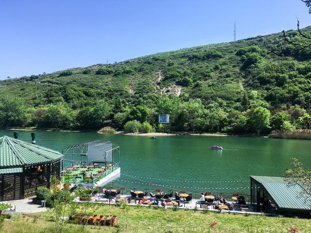 بحيرة السلاحف