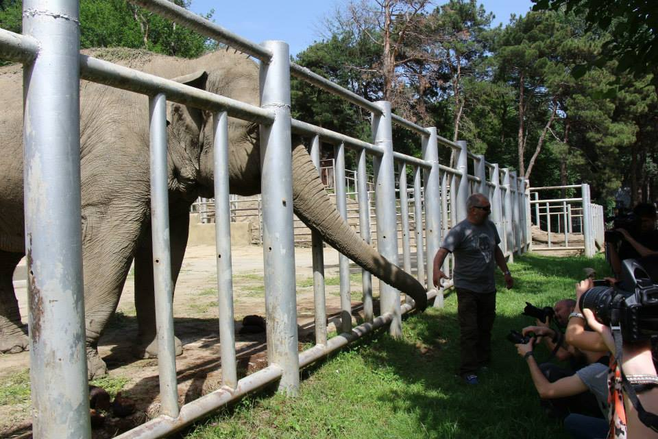 حديقة حيوان تبليسي