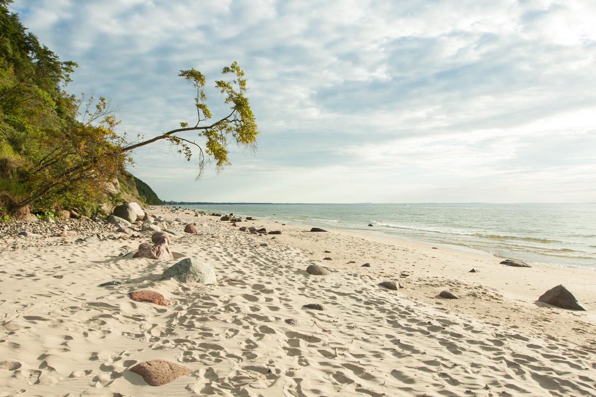 شواطيء ساحل بحر البلطيق