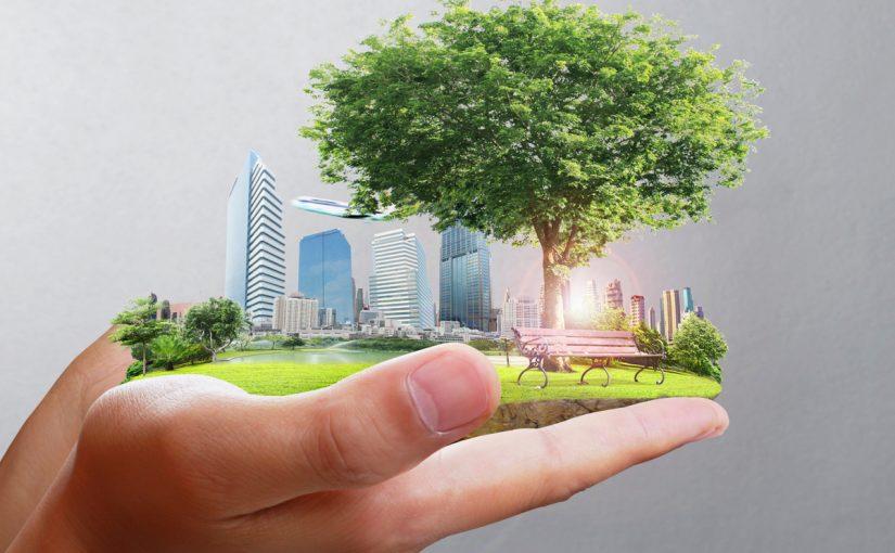تعريف البيئة وعناصرها