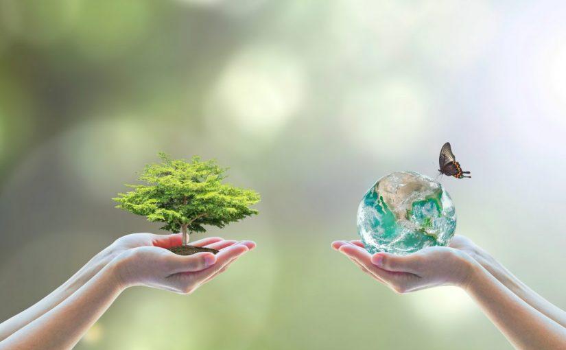 بحث عن علم البيئة مع المراجع